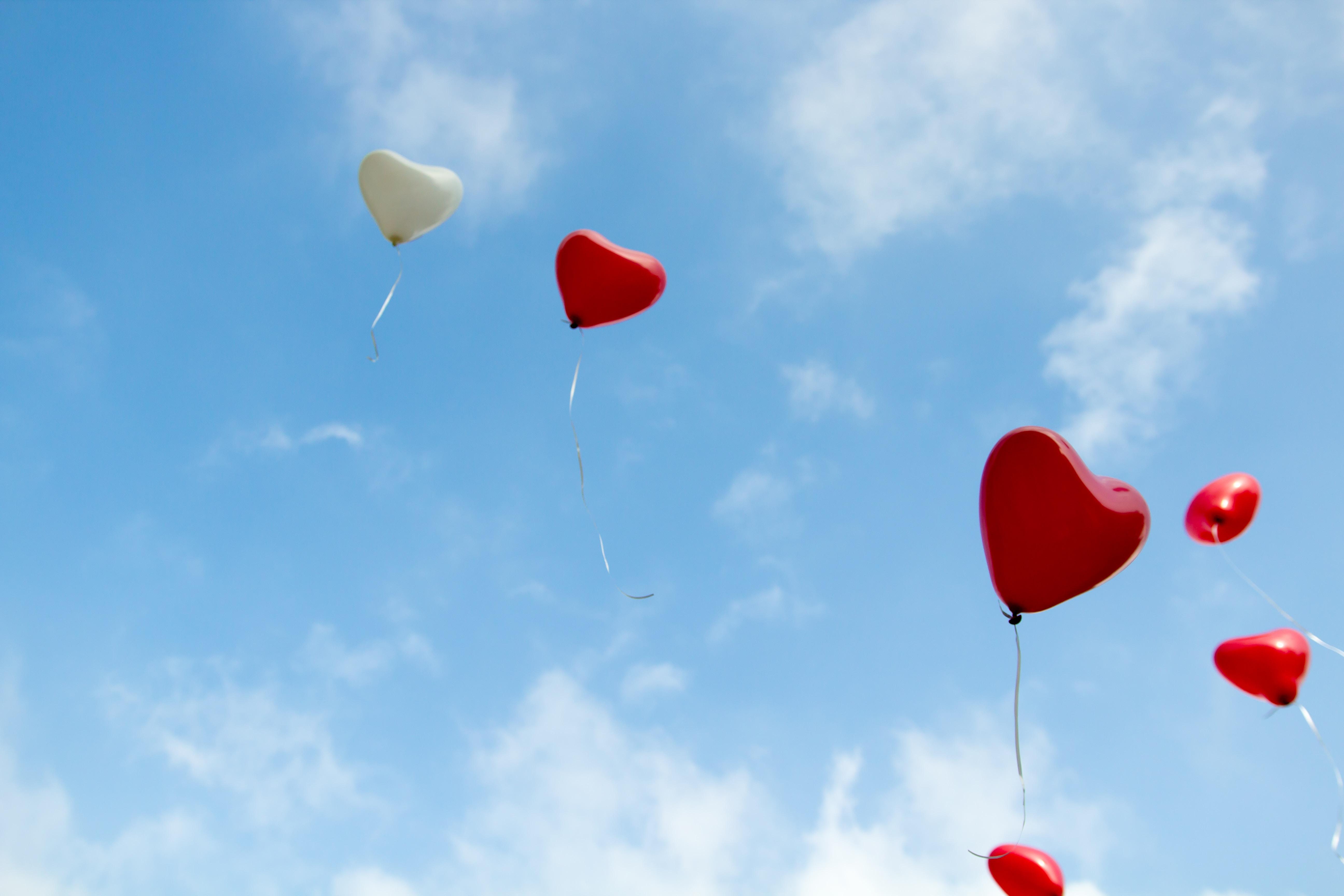 愛は技術。幸せは、愛されることではなく、愛することから始まる